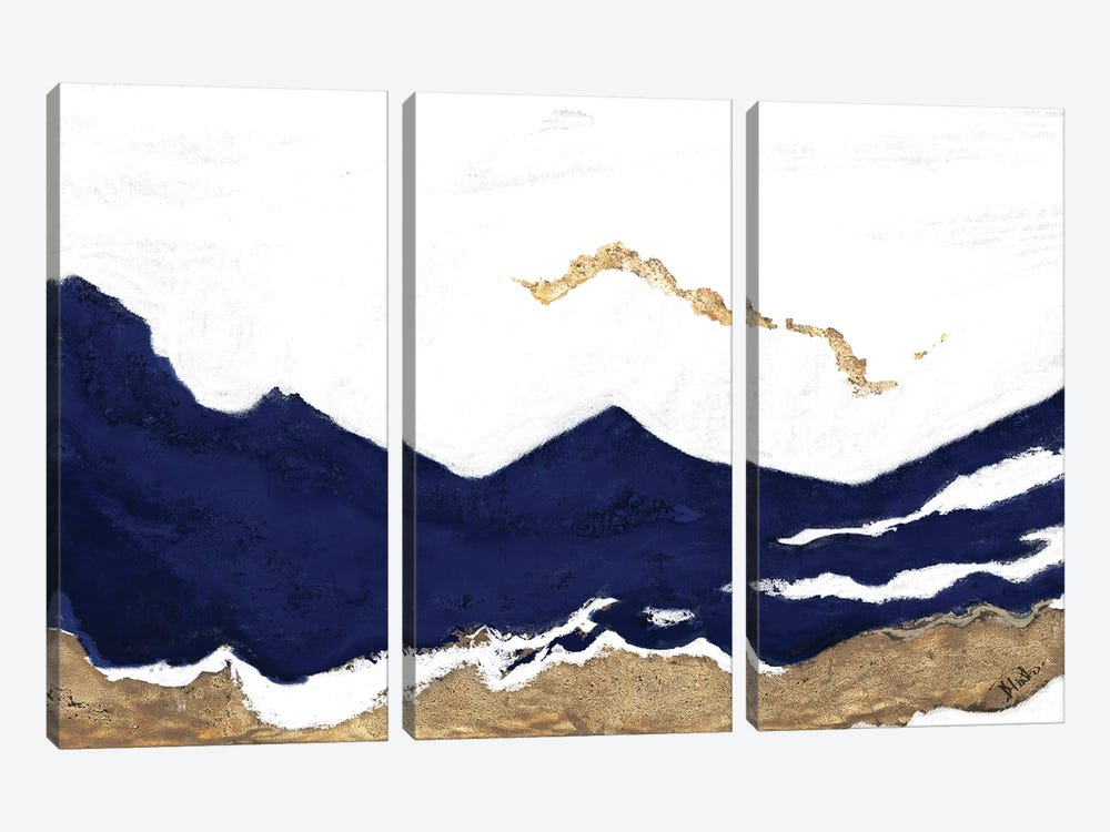 Navy and Gold Tierra II by Patricia Pinto 3-piece Art Print
