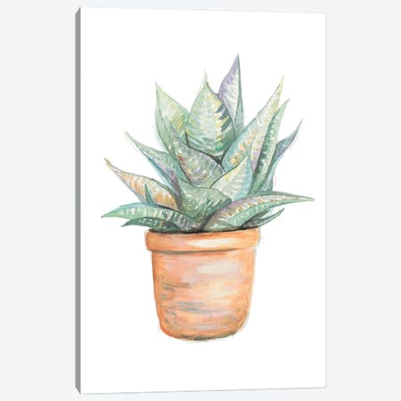 Potted Cactus Canvas Print #PPI725} by Patricia Pinto Canvas Art
