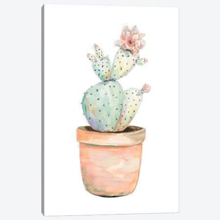 Potted Flower Cactus Canvas Print #PPI727} by Patricia Pinto Canvas Wall Art
