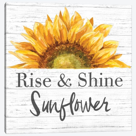 Rise & Shine Sunflower Canvas Print #PPI729} by Patricia Pinto Canvas Print