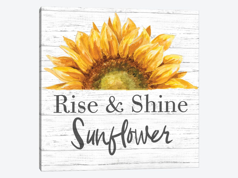 Rise & Shine Sunflower by Patricia Pinto 1-piece Canvas Print