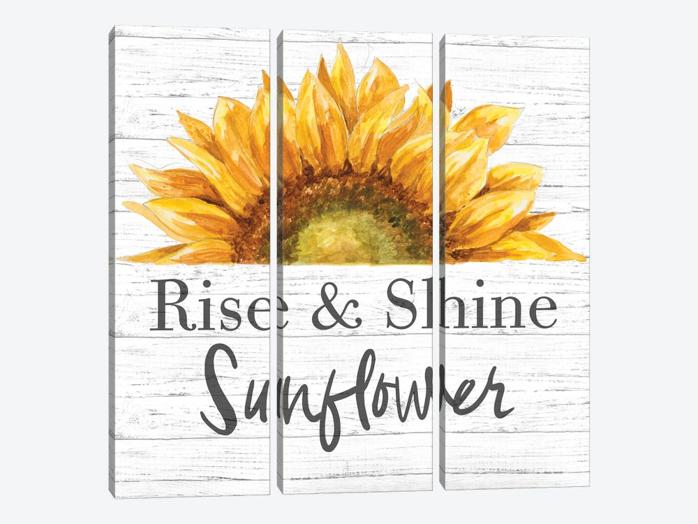 Rise & Shine Sunflower by Patricia Pinto 3-piece Canvas Print
