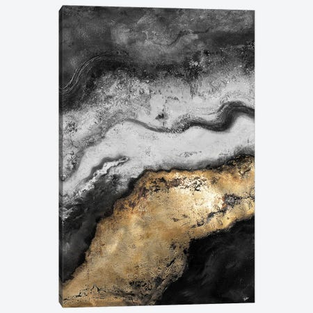 Tierra In Gold and Black Canvas Print #PPI730} by Patricia Pinto Canvas Artwork