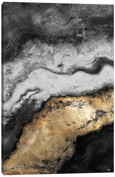 Tierra In Gold and Black Canvas Art Print