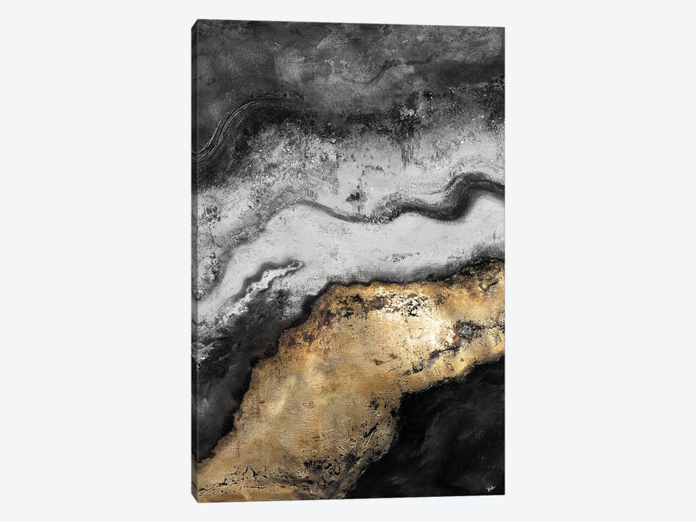 Tierra In Gold and Black by Patricia Pinto 1-piece Canvas Print