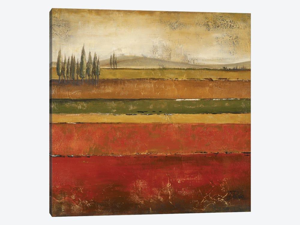 Tuscany II by Patricia Pinto 1-piece Canvas Art
