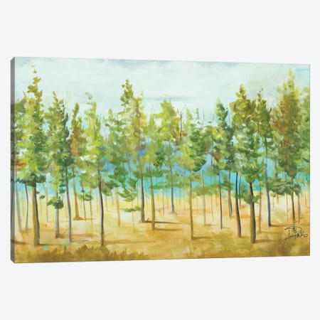 Bosque Verde 3-Piece Canvas #PPI74} by Patricia Pinto Canvas Print