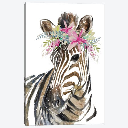 Crowned Zebra Canvas Print #PPI788} by Patricia Pinto Canvas Print