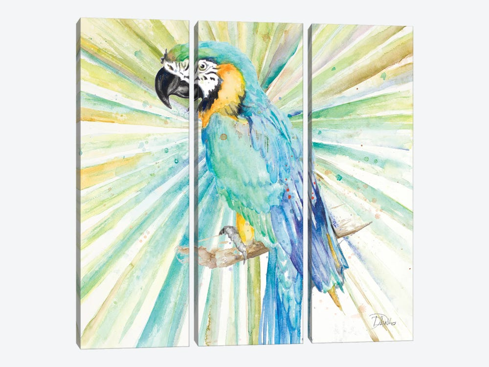 Bright Tropical Parrot by Patricia Pinto 3-piece Canvas Wall Art