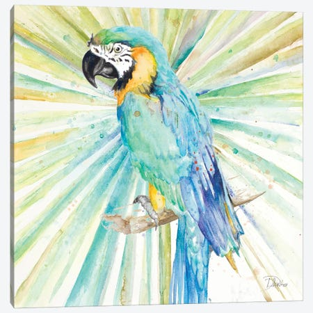 Bright Tropical Parrot 3-Piece Canvas #PPI79} by Patricia Pinto Canvas Wall Art