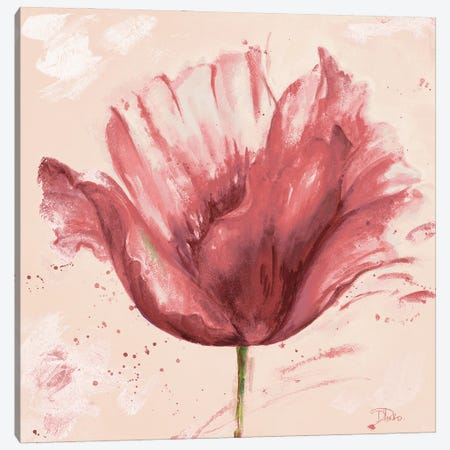 Flower In Pink Canvas Print #PPI801} by Patricia Pinto Canvas Art
