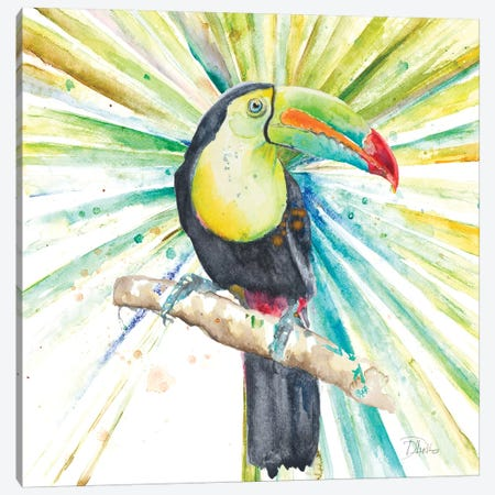 Bright Tropical Toucan Canvas Print #PPI80} by Patricia Pinto Canvas Art Print