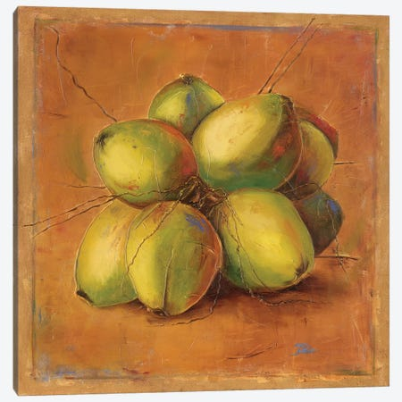 Cocos Locos II Canvas Print #PPI90} by Patricia Pinto Canvas Art