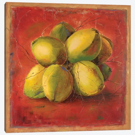 Cocos Locos III Canvas Print #PPI91} by Patricia Pinto Canvas Artwork