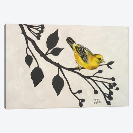 Yellow Bird On Branch I Canvas Print #PPI938} by Patricia Pinto Canvas Artwork