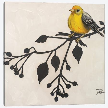 Yellow Bird On Branch II Canvas Print #PPI939} by Patricia Pinto Canvas Wall Art