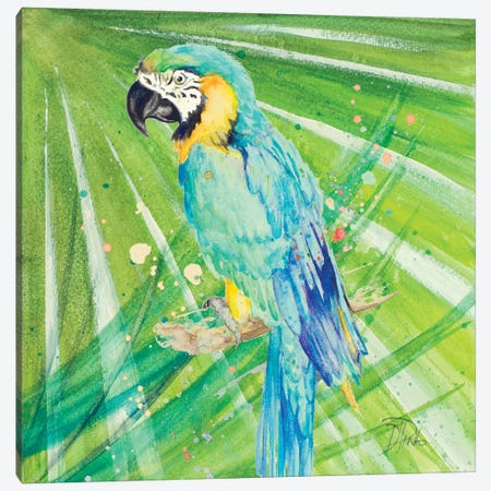 Colorful Parrot Canvas Print #PPI94} by Patricia Pinto Art Print