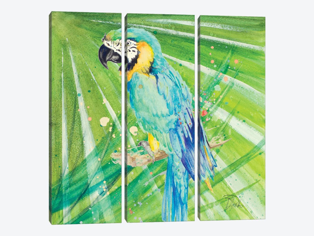 Colorful Parrot by Patricia Pinto 3-piece Canvas Print