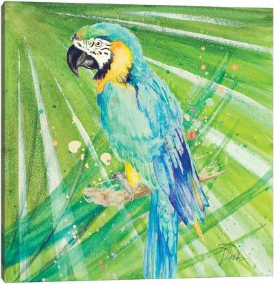 Colorful Parrot Canvas Art Print