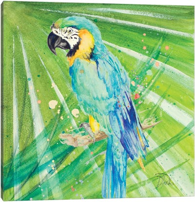 Colorful Parrot Canvas Art Print