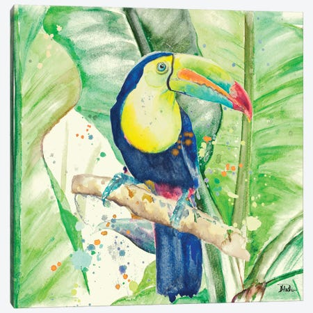 Colorful Toucan Canvas Print #PPI95} by Patricia Pinto Canvas Print