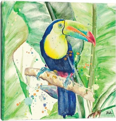 Colorful Toucan Canvas Art Print