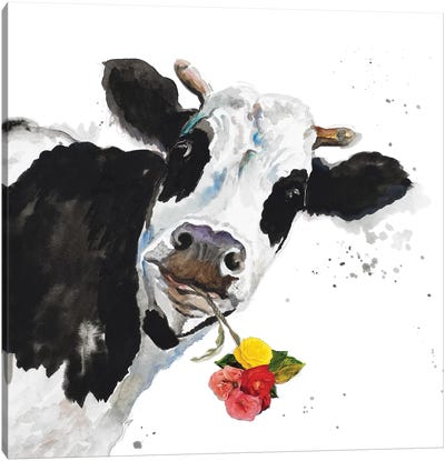 Crazy Cow Canvas Art Print