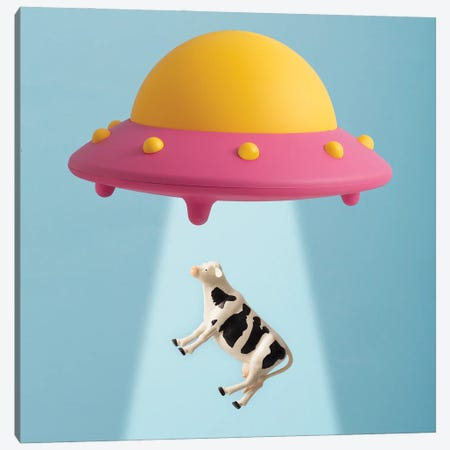 Abducted Cow Canvas Print #PPM1} by Pepino de Mar Canvas Print