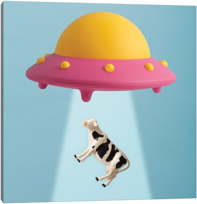 Abducted Cow Canvas Art Print