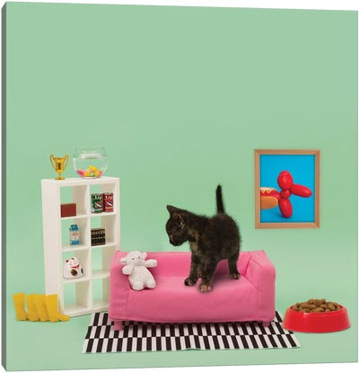 Kitty's Home Canvas Art Print