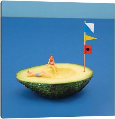 Avocado Boat Canvas Art Print