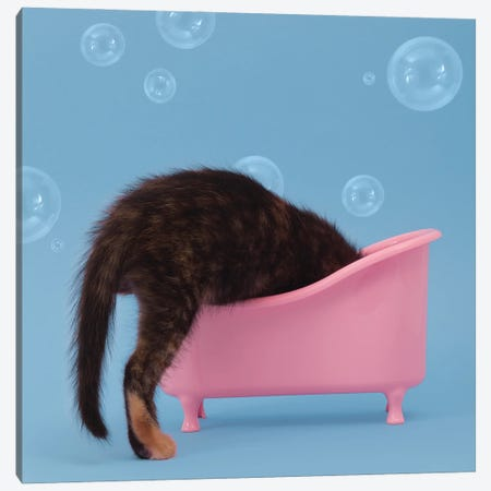Bath Time Canvas Print #PPM6} by Pepino de Mar Canvas Wall Art