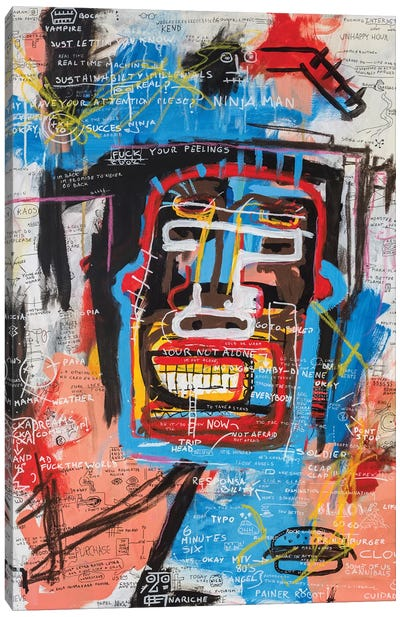 Ninja Face Canvas Art Print