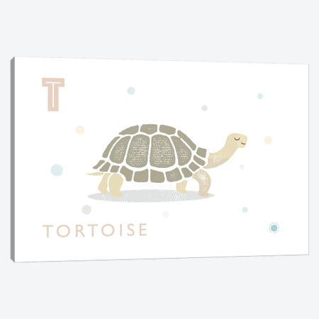 Tortoise Canvas Print #PPX109} by PaperPaintPixels Canvas Print