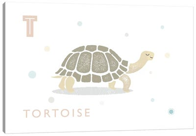 Tortoise Canvas Art Print