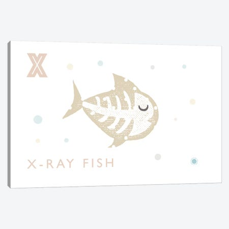 Xray Fish Canvas Print #PPX129} by PaperPaintPixels Canvas Art Print