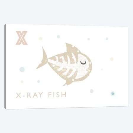 Xray Fish Canvas Print #PPX129} by PaperPaintPixels Canvas Art Print