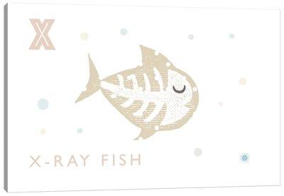 Xray Fish Canvas Art Print
