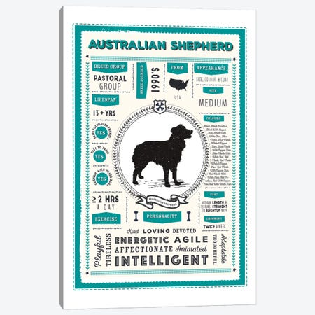 Australian Shepherd Infographic Blue Canvas Print #PPX184} by PaperPaintPixels Canvas Artwork