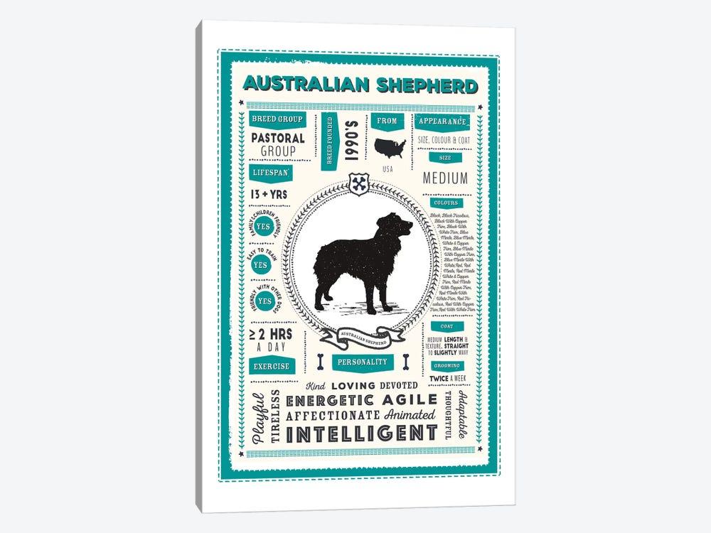 Australian Shepherd Infographic Blue by PaperPaintPixels 1-piece Canvas Art