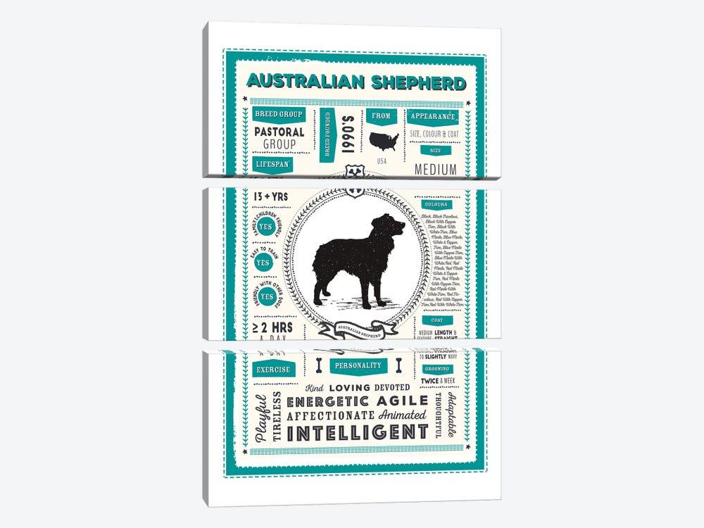 Australian Shepherd Infographic Blue by PaperPaintPixels 3-piece Canvas Wall Art