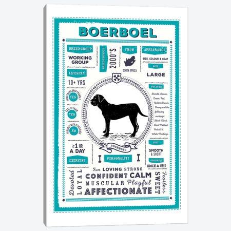 Boerboel Infographic Blue Canvas Print #PPX189} by PaperPaintPixels Canvas Art Print