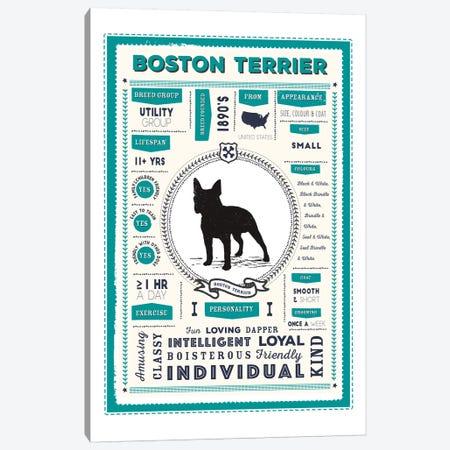 Boston Terrier Infographic Blue Canvas Print #PPX195} by PaperPaintPixels Canvas Art Print