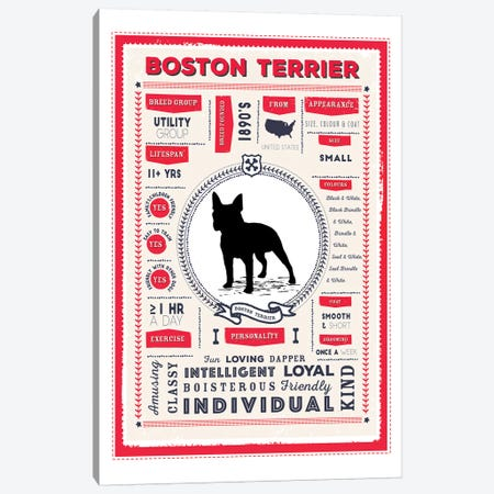 Boston Terrier Infographic Red Canvas Print #PPX196} by PaperPaintPixels Canvas Art Print