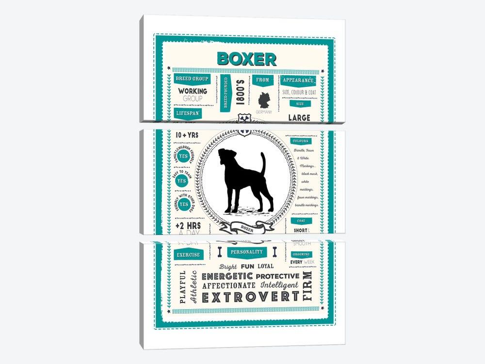 Boxer Infographic Blue by PaperPaintPixels 3-piece Canvas Art