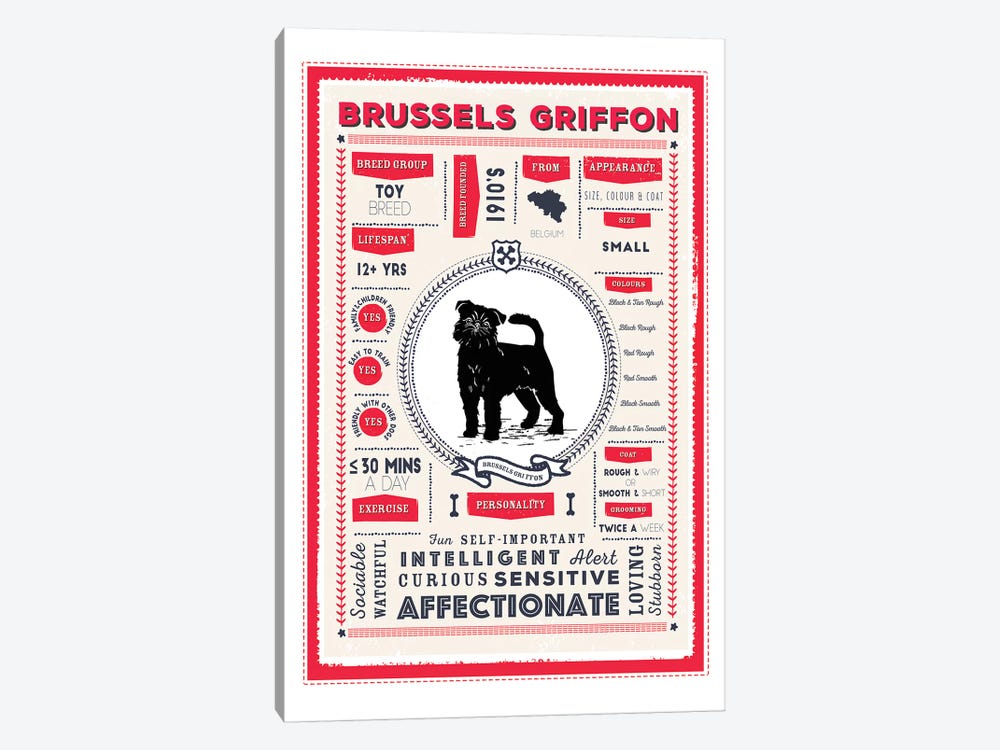 Brussels Griffon Infographic Red by PaperPaintPixels 1-piece Canvas Artwork