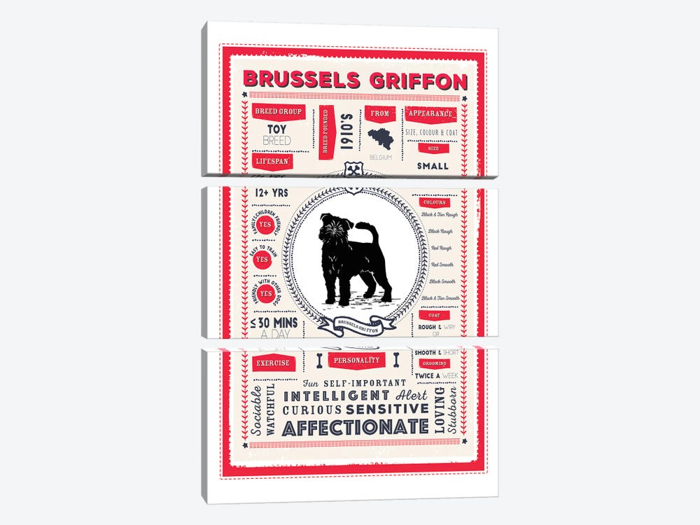 Brussels Griffon Infographic Red by PaperPaintPixels 3-piece Canvas Artwork