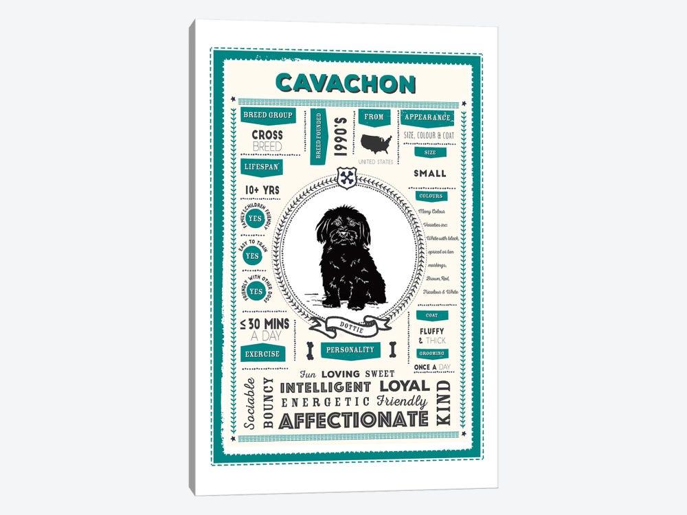 Cavachon Infographic Blue by PaperPaintPixels 1-piece Canvas Wall Art