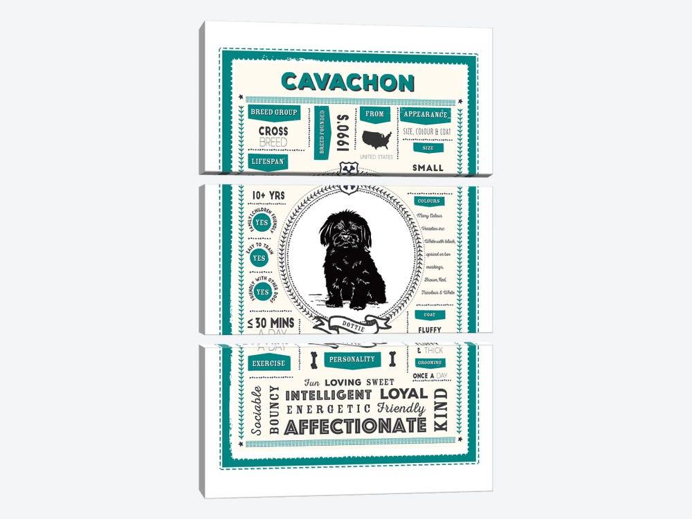 Cavachon Infographic Blue by PaperPaintPixels 3-piece Canvas Art
