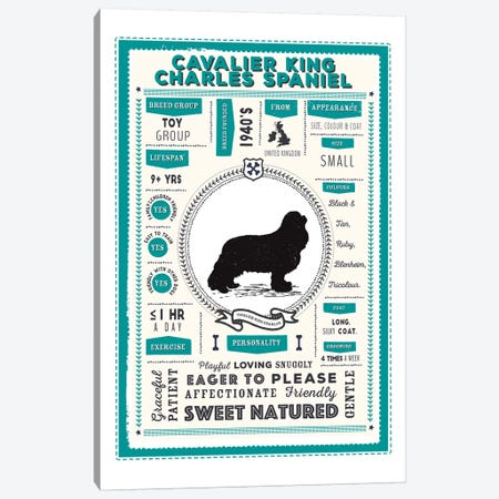 Cavalier King Charles Spaniel Infographic Blue Canvas Print #PPX204} by PaperPaintPixels Canvas Art Print